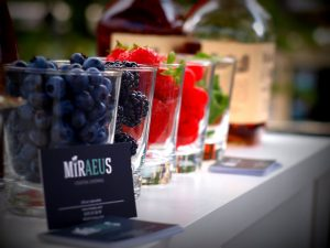 mobiele cocktail bar